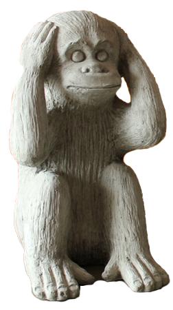 Monkey Not Hear