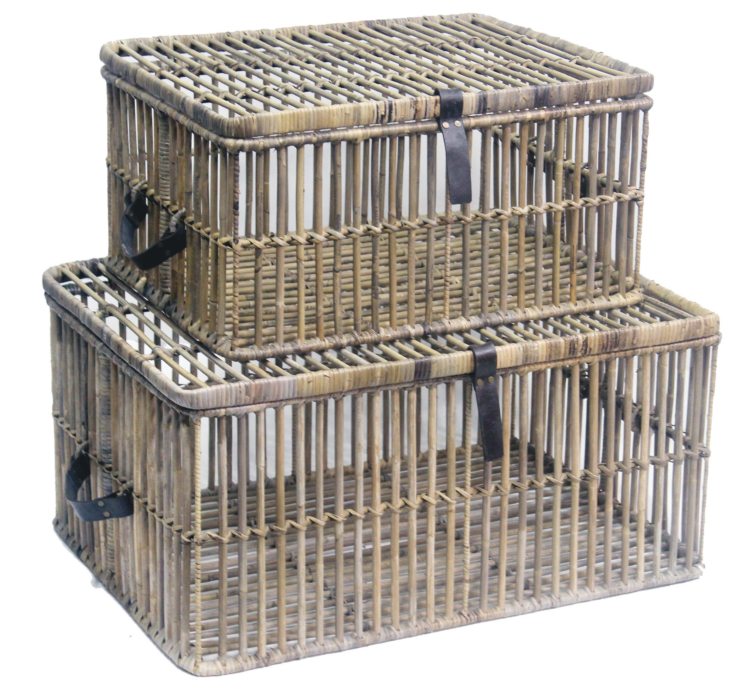 Trunk Rattan open set of 2