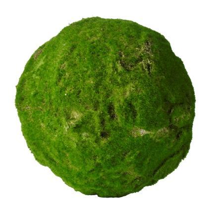 Mos Ball XL