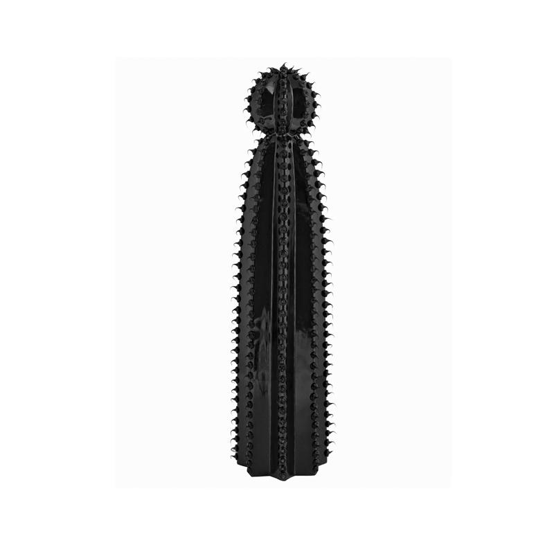 Cactus Alicia glossy Black